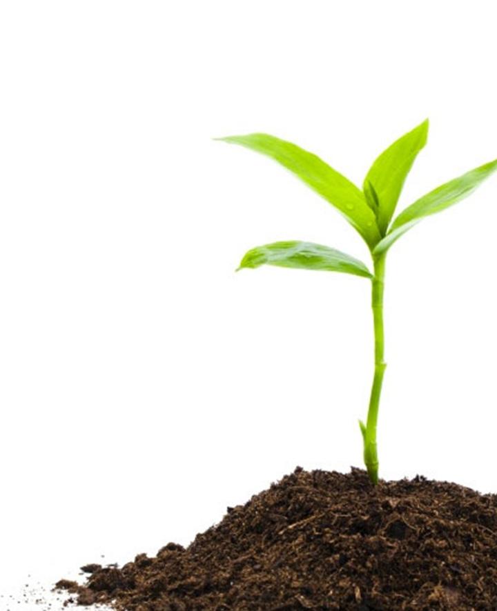 Biokomposto gamyba ir realizavimas